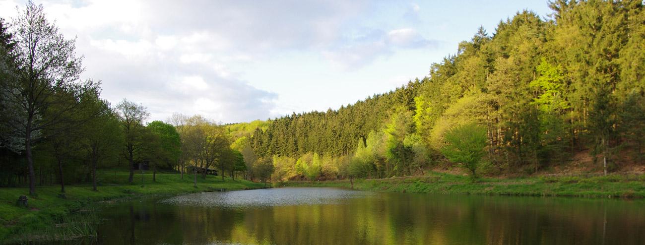 Heilbachsee